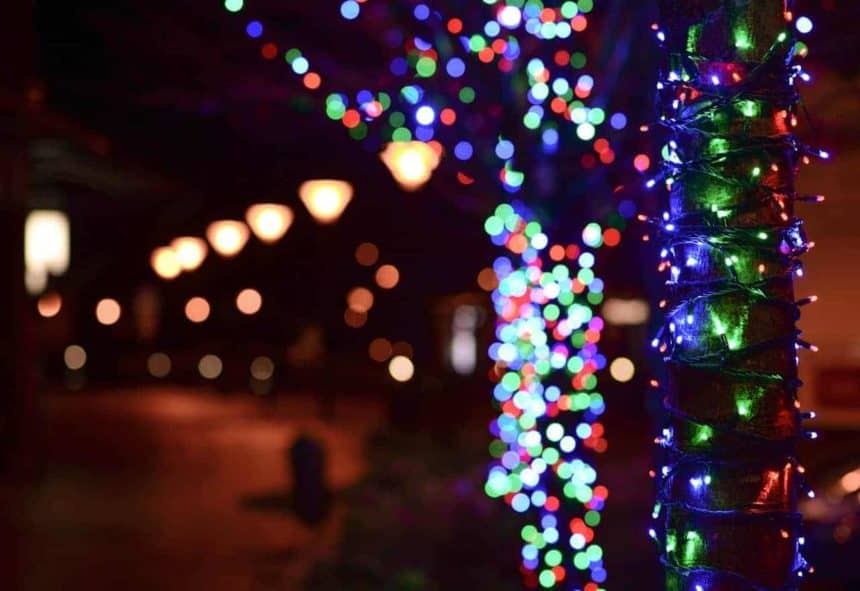 Christmas In South Africa Images.Christmas In South Africa How Is Christmas In South Africa